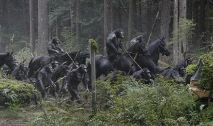 amanecer-simios-caballos