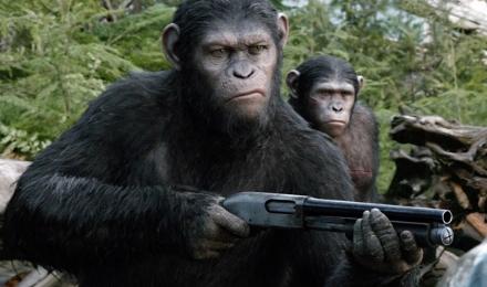 amanecer-simios-escopeta