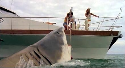 tiburon_barco