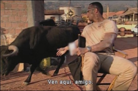 dwayne-johnson-bull