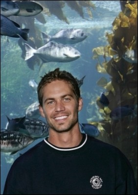 paul-walker-biologo