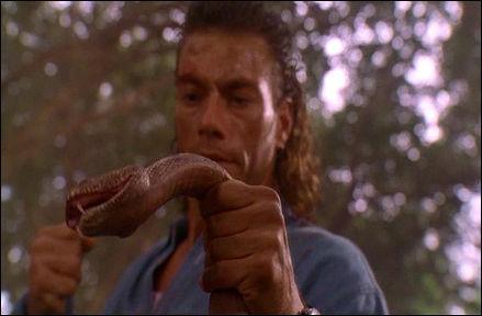 blanco-humano-serpiente