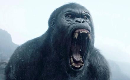 la-leyenda-de-tarzan-gorila