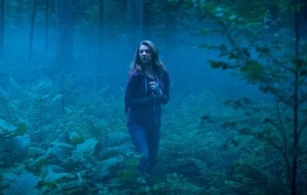 el-bosque-de-los-suicidios-bosque