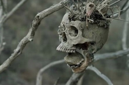 bone-tomahawk-skull