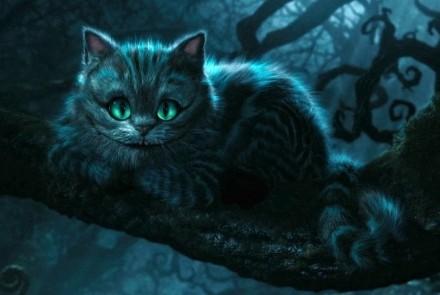alicia-gato-rison