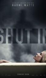 shut-in-poster-usa