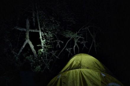 blair-witch-bosque