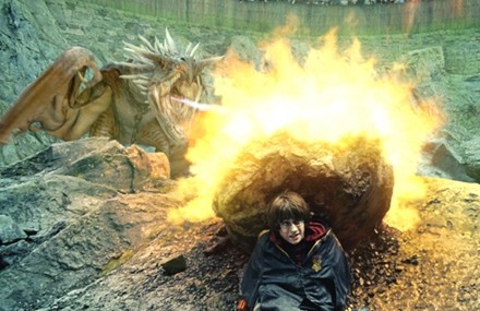 harry-potter-y-el-caliz-de-fuego-dragon